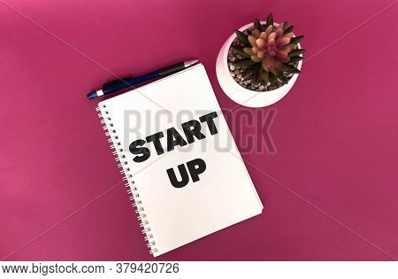 Start Up On A White Notepad, A Pot With A Flower And A Pen On A Pink Background.