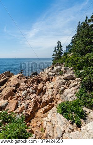 Rugged Coast Of Granite Rock And Lush Green Trees By The Bass Harbor Lighthouse In Acadia National P