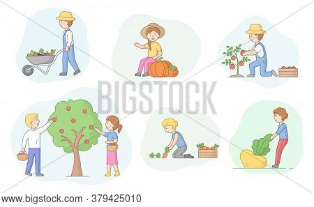 Concept Of Harvesting And Eco Farm. Set Of People In Process Of Harvesting. Male And Female Characte