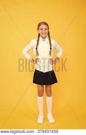 Happy Schoolgirl. Schoolgirl Happy Smiling Pupil Long Hair. Beginning Of Academic Year. Educational