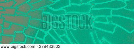 Realistic Leopard Print. Green Wild Safari Texture. Realistic Leopard Print Background. Funny Mint C