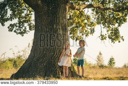 Happy Kids On Countryside. Climbing Trees Children. Little Boy And Girl Climbing High Tree In The Fo