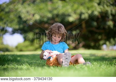 Happy Kid Hugging Beautiful Puppy Dog. Young Boy Kid Playing With Puppy And Sitting On Grass. Cute B
