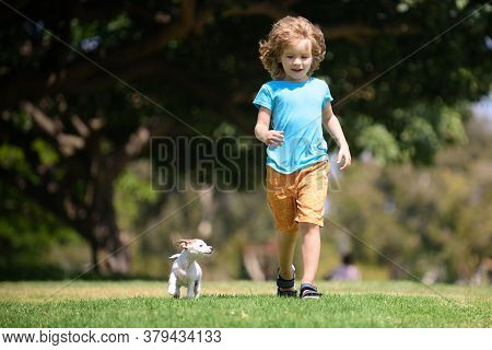 Fun Games With Home Doggy On Summer Vacation. Young Boy Runs In A Green Field With His Pet