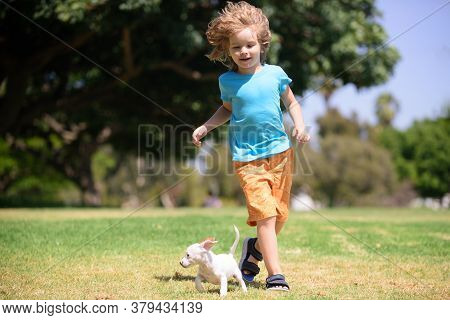 Cute Boy Runs In A Green Field With His Pet. Puppy Running. Child Lovingly Embraces His Pet Dog. Boy