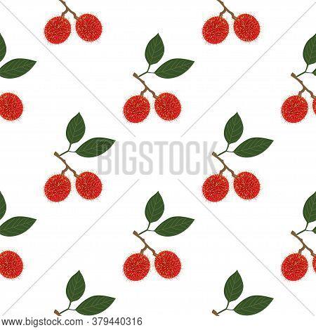 Rambutan Fruit. Seamless Vector Patterns On White Background