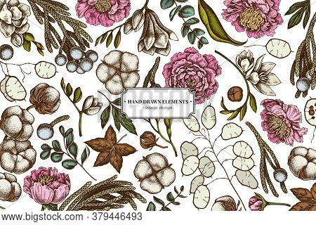 Floral Design With Colored Ficus, Eucalyptus, Peony, Cotton, Freesia, Brunia Stock Illustration