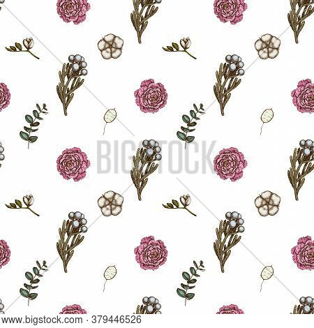 Seamless Pattern With Hand Drawn Colored Ficus, Eucalyptus, Peony, Cotton, Freesia, Brunia Stock Ill