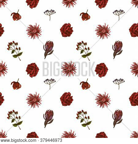 Seamless Pattern With Hand Drawn Colored Viburnum, Hypericum, Tulip, Aster, Leucadendron, Amaryllis