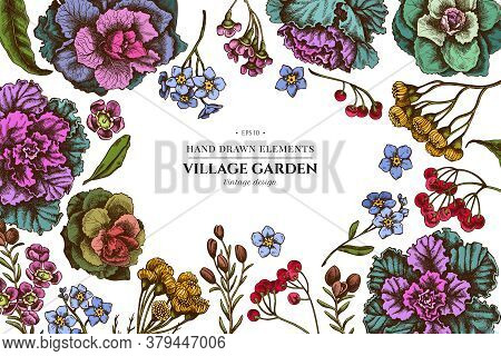 Floral Design With Colored Wax Flower, Forget Me Not Flower, Tansy, Ardisia, Brassica, Decorative Ca