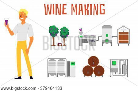Set Of The Making And Production Of Wine With Grapes And A Winery, Barrels And A Vineyard,