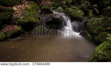 Autumn Still Life With A Stream Of Water And Rapids