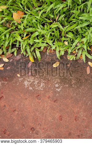 Background Of Stone Footpath And Green Grass