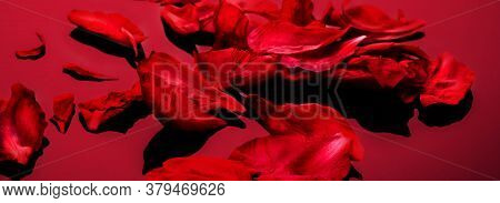 Abstract Valentine Background With Falling Red Peony Petals On Red Background