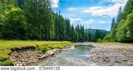 Mountain River Among The Forest In Valley. Sunny Summer Landscape. Green Grass And Rocks On The Shor