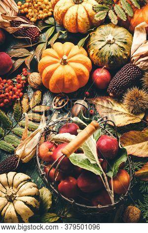 Autumn Still Life, Autumn And Halloween Concept