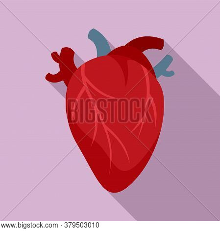 Cardiology Human Heart Icon. Flat Illustration Of Cardiology Human Heart Vector Icon For Web Design