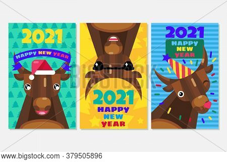 New Year Cards Set With Bulls. Chinese 2021 Sign