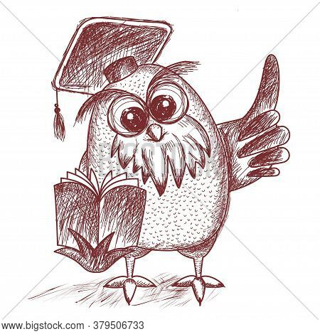 A Wise Owl In A Graduate S Hat Shows Its Wing Up. Owl Reads A Book. Design For Schools And Education