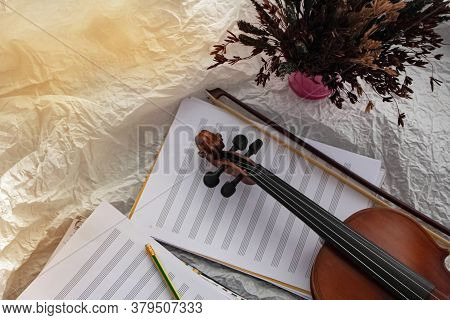 Scroll Of Violin Put Beside Dried Flower Pot,on Background,blurry Light Around