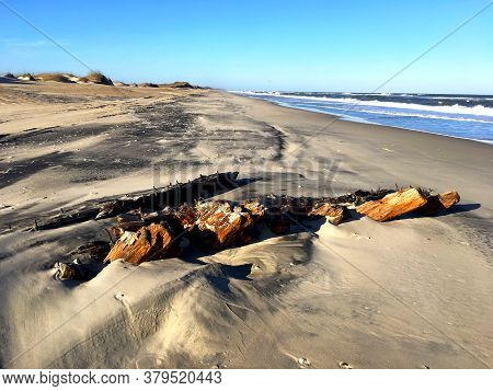 Driftwood Partially Buried In Sand Next To The Ocean With A Blue Sky.