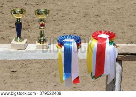 Group Of Horse Riding Equestrian Sport Trophies And Badges Rosettes At Equestrian Event On White Woo