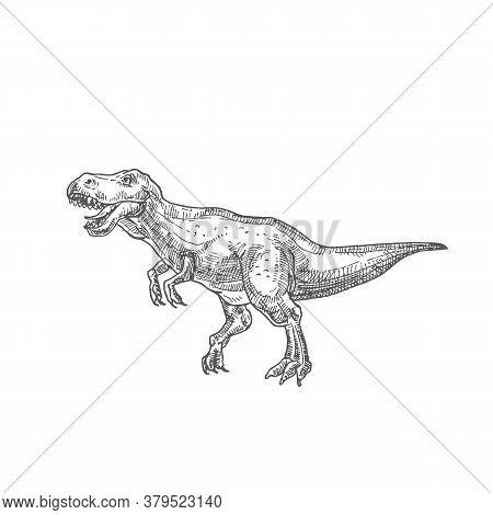 Prehistoric Dinosaur Doodle Vector Illustration. Hand Drawn Tyrannosaurus Rex Reptile Engraving Styl