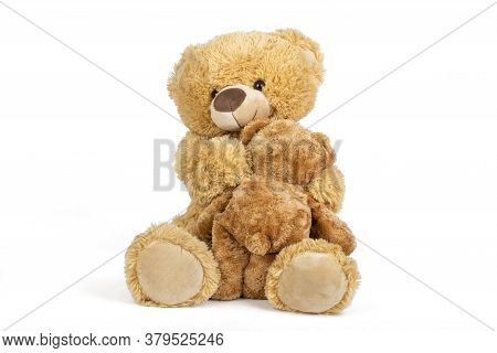 Teddy Bear With Little Bear In On White Background.
