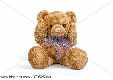 Teddy Bear Sitting Shocked On White Background.