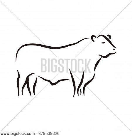 Simple Beef Cow Meat Logo Design Vector