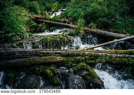 Scenic Nature Landscape With Beautiful Cascades Of Mountain Creek Among Lush Thickets In Forest. Idy