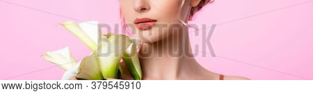 Cropped View Of Elegant Beautiful Woman Holding Calla Flowers Isolated On Pink, Panoramic Shot