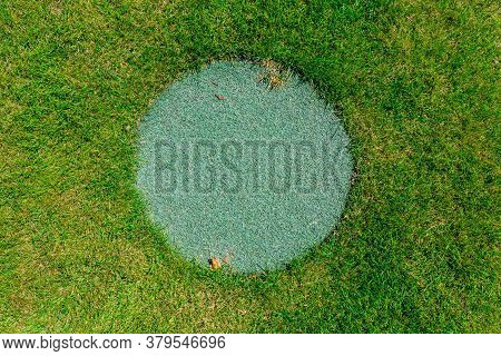 Round Manhole Overgrown With Green Grass On Lawn