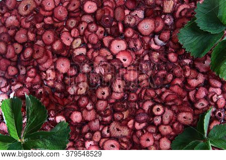 A Large Number Of Dried Strawberry Slices. Natural Product. Dried Strawberry Fruit With Green Leaves