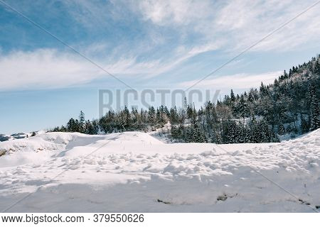 Winter Forest Strewn With Snow Against The Background Of The Blue Sky And Drifts Of Snow.