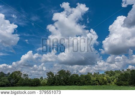 In A Opened Field Looking Upwards To The Big Blue Sky With Huge Fluffy White Clouds And The Woodland