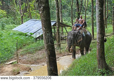 Riding An Elephant. A Man With A Child Riding An Elephant On A Background Of Green Jungle And Hevea.