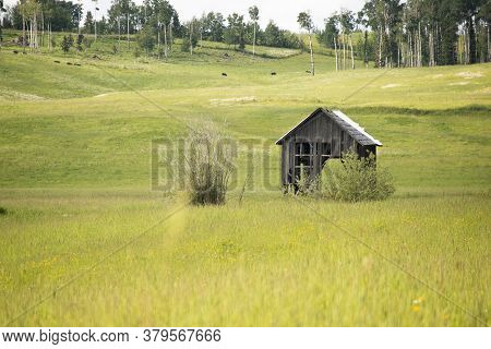 This Is A Picture Of An Old Shed Found I A Farmer's Filed Near Prince George