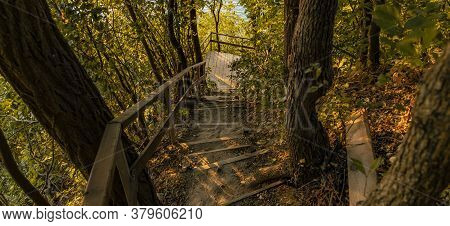 Autumn Nature Park September Season Time Down Stairway With Yellow And Brown Foliage Everywhere