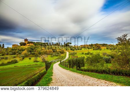 Winding dirt road rises to the farm. Rural tourism. Cozy picturesque farms in the hills of Tuscany. Olive trees on green grassy meadows. The concept of active, rural and photo tourism