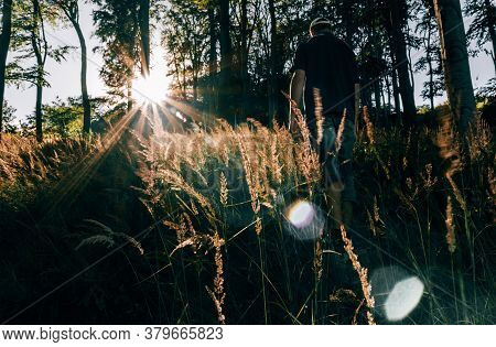 Young Man Walking In Forest With Sun Rays Shine Through Trees. Ore Mountain, Czech Landscape, Toned