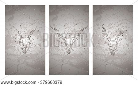 Vector Set Of Three Illustrations With Hand Drawn Skulls Antelopes And Goat On Grunge Texture Backgr