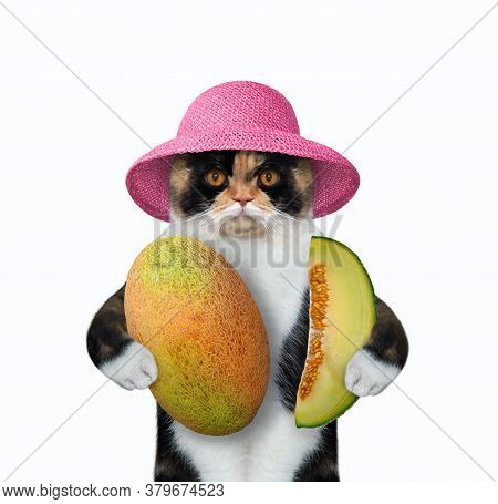 The Multi Colored Cat In A Pink Straw Hat Cat Is Holding A Big Melon And A Slice Of Melon. White Bac
