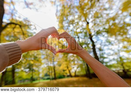 Couple Making Hand Heart Sign Together Towards The Sky With Scenic Tall Autumn Trees And Sunrays Bea