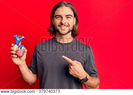 Young handsome man holding heart organ smiling happy pointing with hand and finger