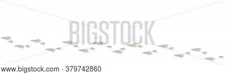 Rat Tracks. Typical Footprints Of A House Rat. Isolated Icon Vector Illustration On White Background