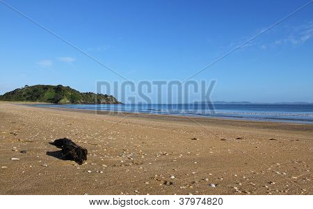 A Beautiful Sunny Morning At Taipa Beach