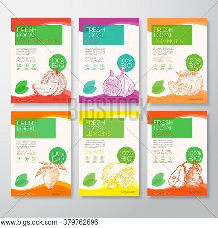 Fresh Local Fruit Labels Packaging Design Layout Collection. Vector Background Covers Set. Modern Ty