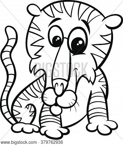 Black And White Cartoon Illustration Of Funny Tiger Wild Animal Comic Character Coloring Book