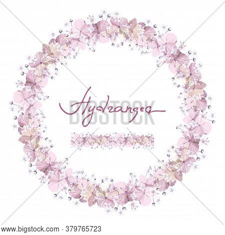 Floral Seamless Brush And Round Wreath With Softness Pink Hydrangea Flowers With Bud On White Backgr